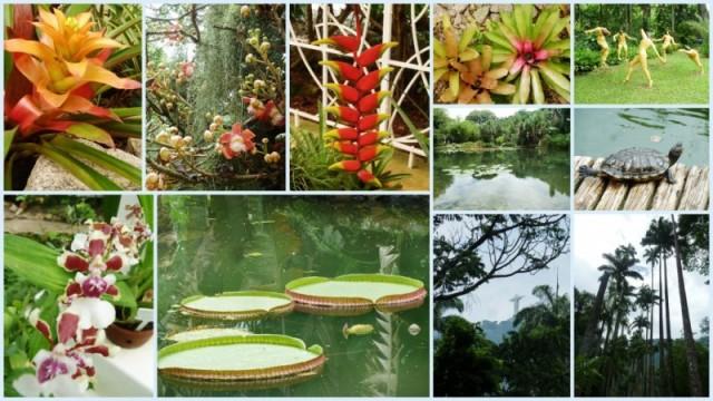 Jardim Botanico RJ trotamundostatisato