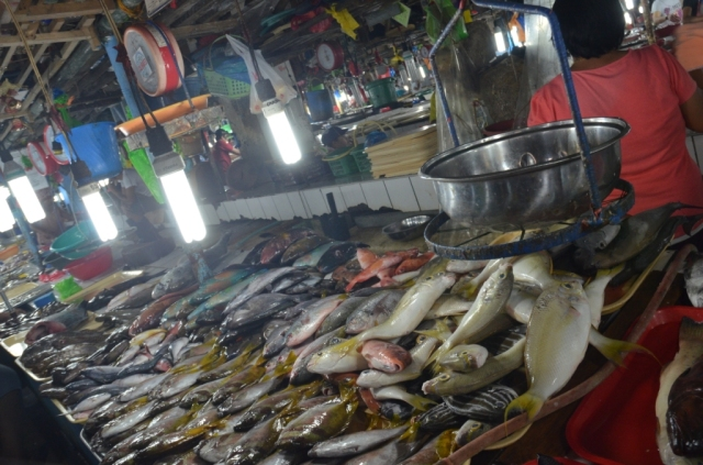 mercado central puerto princesa (06) trotamundostatisato