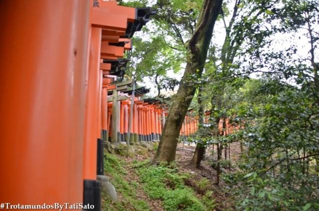 Os torii gates em Fushimi Inari, Kyoto